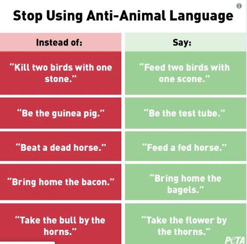 PETA says Stop Using Anti-Animal Language