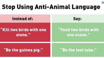 PETA says Stop Using Anti-Animal Language