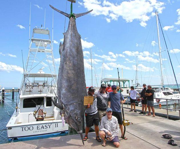 650kg짜리 물고기를 낚은 낚시꾼에게 쓴소리가 쏟아지고