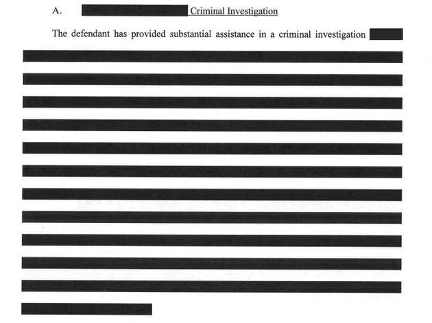 Sonderermittler Robert Mueller hat eine Strafempfehlung für den angeklagten Ex-Trump-Berater Michael Flynn veröffentlicht – mit brisantem Inhalt zwischen den Zeilen (und vielen schwarzen Balken).