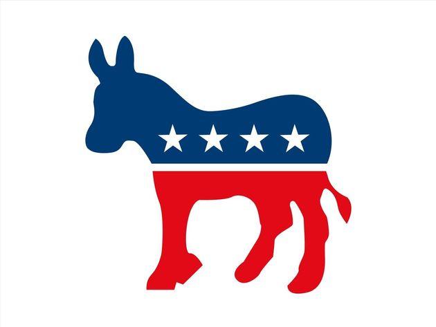 미국 민주당의 이념적 미래에 대해 지지자들의 의견은