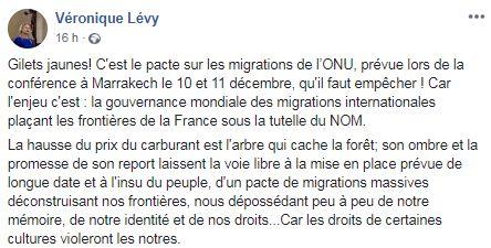 Les gilets jaunes partagent de nombreuses fake news sur le pacte de Marrakech