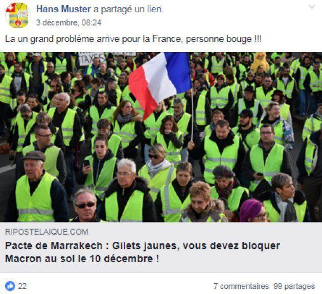 """Ces gilets jaunes relaient un article pour """"bloquer"""" Macron"""
