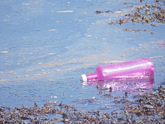 One analysis of 259 water bottles from 19 places in nine countries found an average of 325 plastic particles...