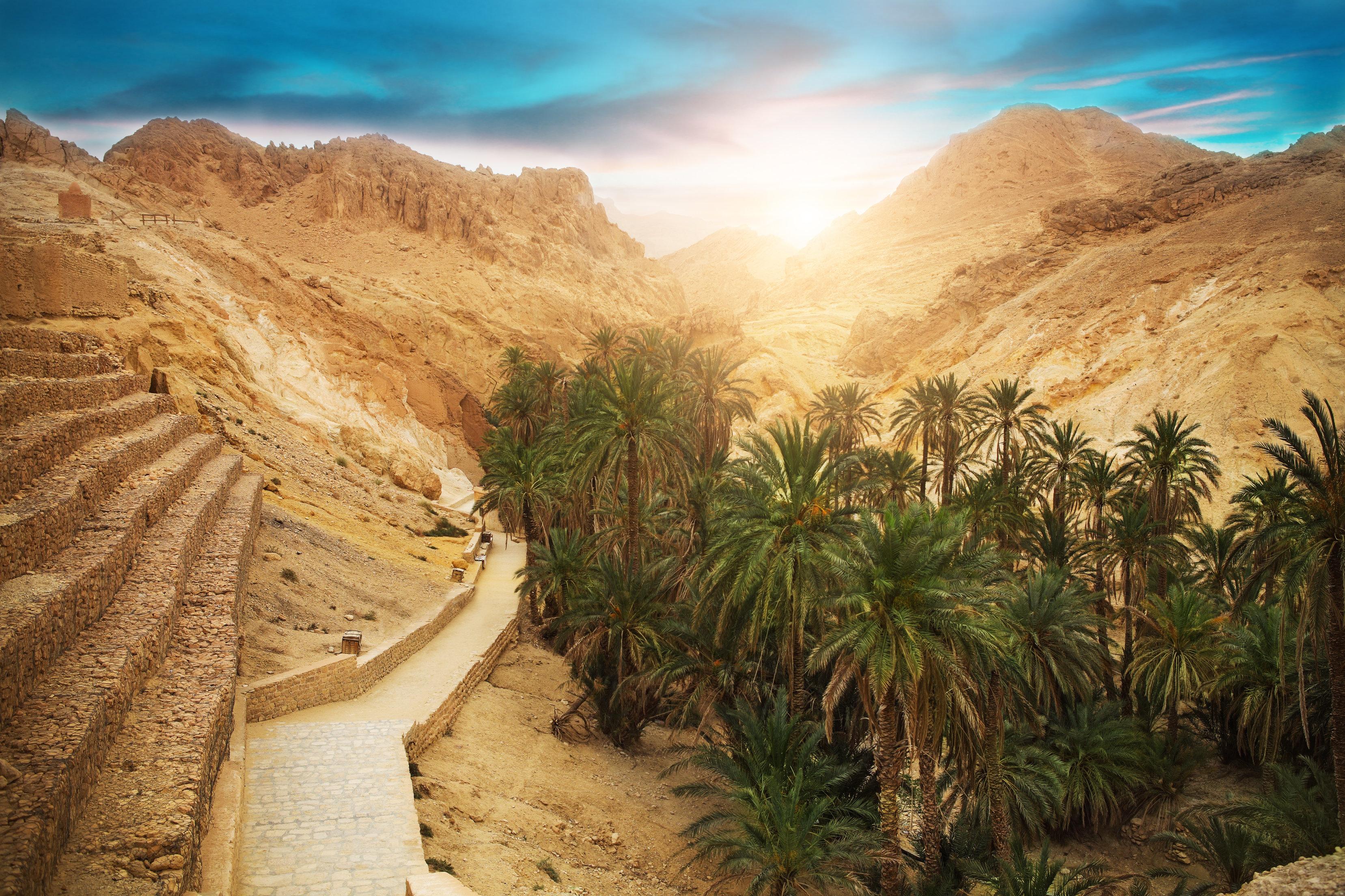 Tourisme, culture...Tozeur a le potentiel pour devenir le nouveau Marrakech selon René
