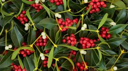 Decorate Your Home For Christmas Without Plastic – From Pinecone Wreaths To Hand-Painted