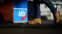 Trotz rechtsextremer Kontakte: AfD hält vorerst an Parteijugend