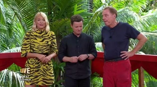 Holly Willoughby and Dec Donnelly announced 11 million votes had been cast in the