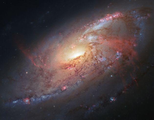 Διονύσης Σιμόπουλος: Το σύμπαν βρίσκεται στην άνοιξη της ζωής
