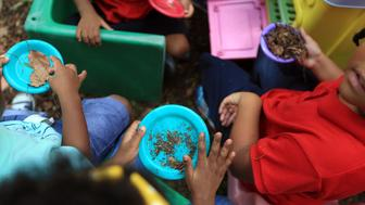 Children typically play with dirt, but if the soil is lead contaminated this can be a hazard to their health. In this photo, children from a New Orleans childcare center play in a yard that was remediated by covering the existing soil with a geotextile fabric then placing a six-inch clean soil cap atop the fabric.