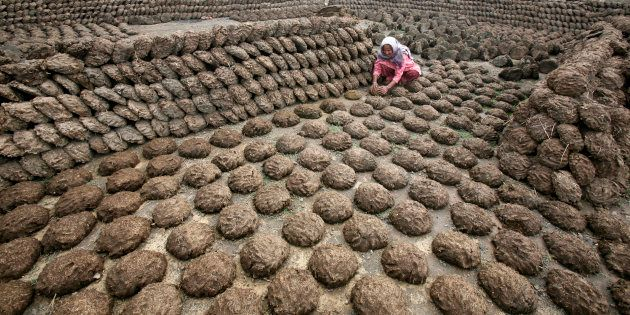A woman makes cow dung cakes at Bahlolpur village in the northern Indian state of Punjab February 10,...