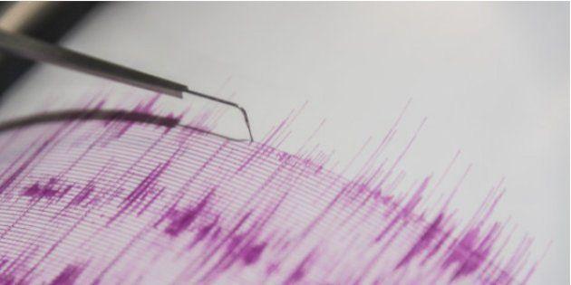 4.6 Magnitude Earthquake Hits Himachal Pradesh, No Casualties