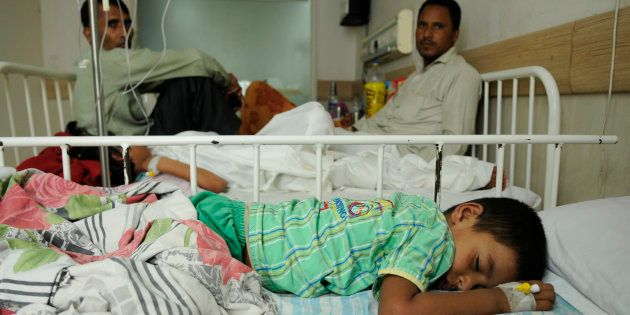 Chikungunya Toll Rises To 15 In Delhi, Govt Seeks People's