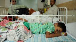 Chikungunya Toll Rises To 15 In Delhi, Govt Seeks People's
