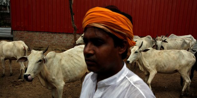 The Economic Cost Of Gau Raksha (Hint: It's 5 Times More Than Swachh
