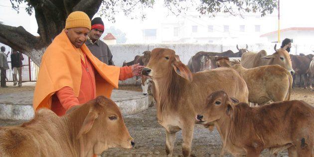 Whitewashing Yogi Adityanath's Image Doesn't Change The