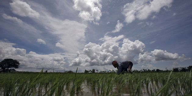 Below Normal Monsoon In 2017 Due To El-Nino Effect, Forecasts