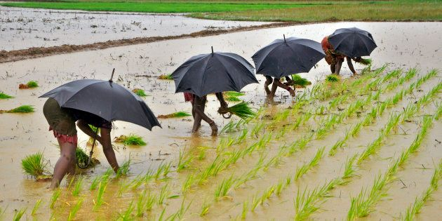 How Experimental Economics Could Help Solve The Farmers'