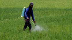 Hours Before Roll-Out, GST Council Reduces Tax On Fertiliser To