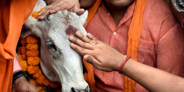 SC Orders Nationwide Stay On Centre's Cattle Trade Ban