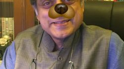 Politicians Are Protesting The Defamation Case Against AIB By Taking Up The #DogFilter