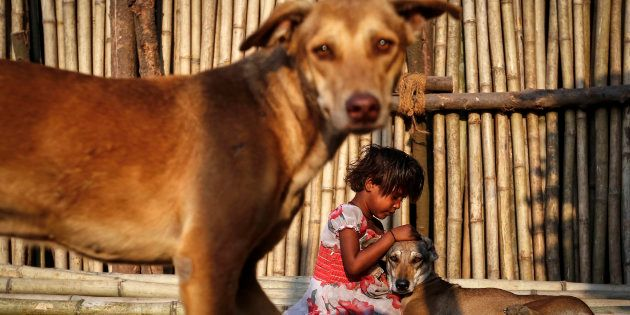 Shazia, a six year-old-girl, plays with street dogs on bamboo sticks at a timber market in Mumbai March...