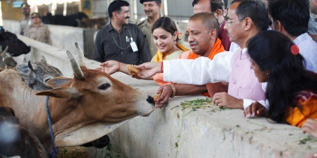 UP Launches Exclusive Ambulance Service For Cows, As Man Carries Son's Body On His