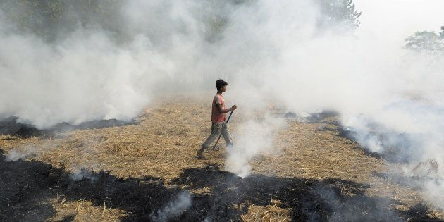 Stop Burning Stubble, Turn It Into Fertiliser And Ethanol Instead, Modi Tells