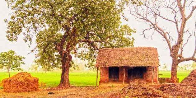 Parliamentarians adopting villages in their constituencies for holistic development is yet to show significant