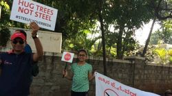 Bengaluru Has 10 Days To Save 112 Trees That Will Be Felled For The Steel Flyover