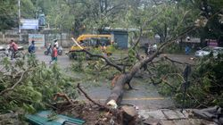 Tamil Nadu Limps Back To Normalcy Two Days After Cyclone