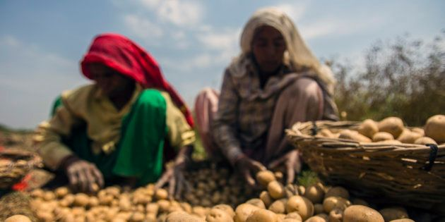 Paradigm Shifts In India's Agricultural