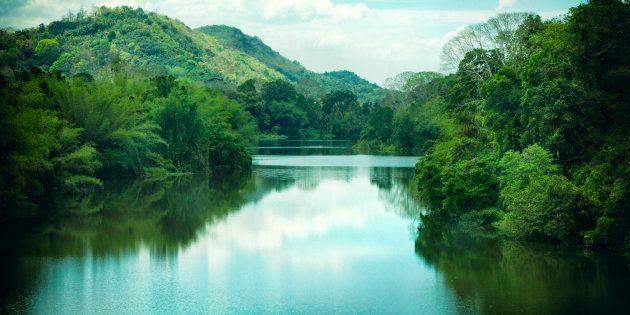 The Periyar River in Kerala,
