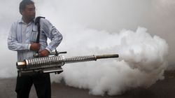 The Morning Wrap: New Dengue Strain Found In India; Suspected Terror Attack In New