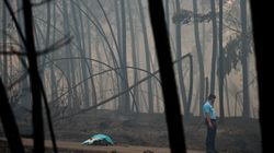 More Than 50 Killed By Forest Fire In