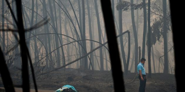 The fires occurred in the Pedrógão Grande area, about 150 kilometres northeast of
