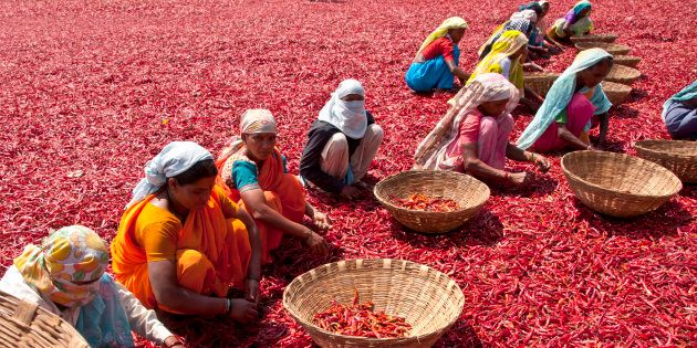 Women Farmers In North India Battle Inheritance Laws, Self Doubt, To Own
