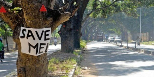 Under Pressure From Citizens And Green Activists, Karnataka Govt Abandons Bengaluru Steel Flyover