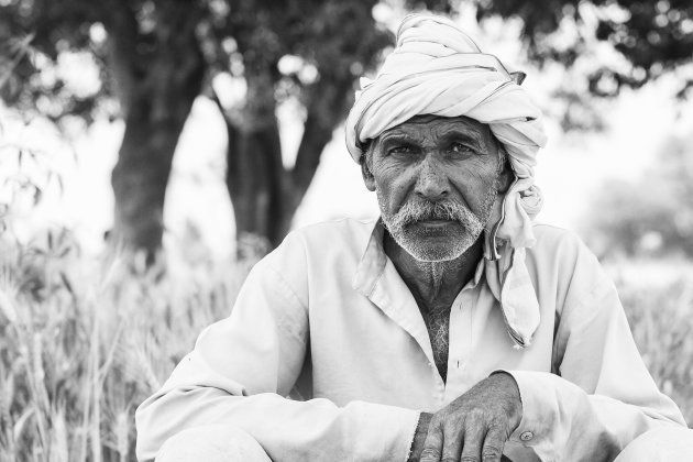 Puttulal, another Dalit farmer in Nizampur, sits at the edge of his small farmland. All his crops are...