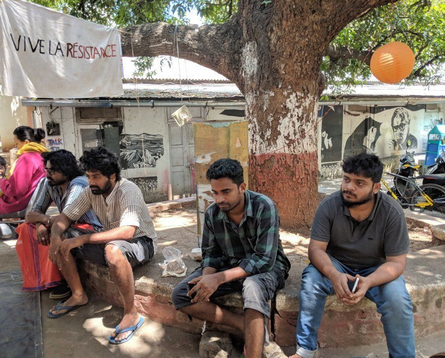 Students below the famous Wisdom Tree at the FTII campus in Pune on