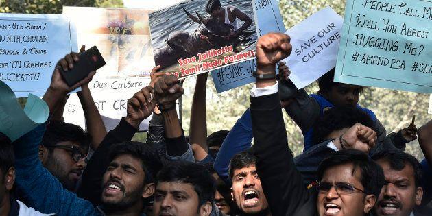 Jallikattu supporters during the protest March against Jallikattu ban at Jantar-Mantar on January 19,...
