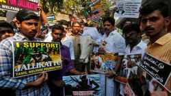 Tamil Nadu Files Caveat In SC To Defend Its Ordinance On