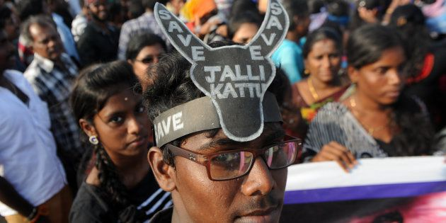 Jallikattu Row: Violence Breaks Out In Chennai, Other Parts Of Tamil