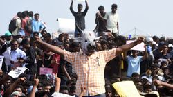 Jallikattu Legalised In Tamil Nadu, O Panneerselavam's Bill Passed In State