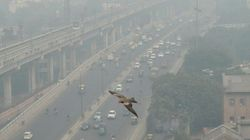 Delhi Air Pollution Worsens, 8 Areas Record 'Severe' Pollution