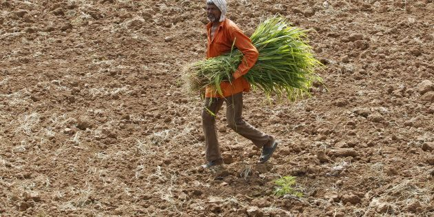 In Telangana, An Entire Village Is Helping Farmers Update Tattered Land