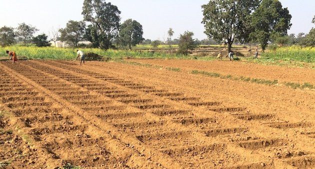 Farmers preparing a small field to grow vegetables in