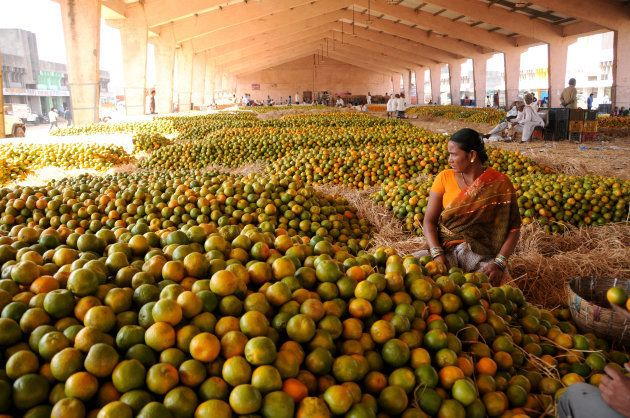 India Is Best Poised For A 'Fruit Circular