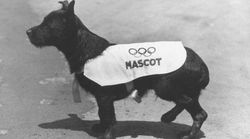 Which Olympic Mascot Reigns