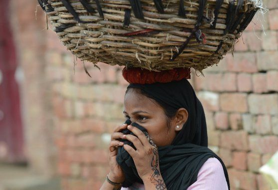 In this picture taken on August 10, 2012, a manual scavenger covers her nose while carrying human waste...